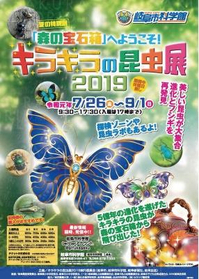夏の特別展「キラキラの昆虫展2019」