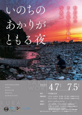 ぎふ長良川の鵜飼写真展「いのちのあかりがともる夜」