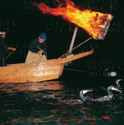 「長良川鵜飼」が今年も始まります!さぁ、幽玄の世界へと旅立ちましょう!