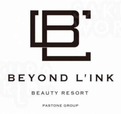BEYOND LINK