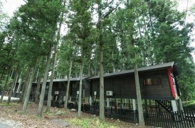 コテージは全棟ドッグラン付き。静かな木立の中でゆっくり過ごせる。