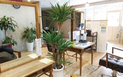 Lian hair salon