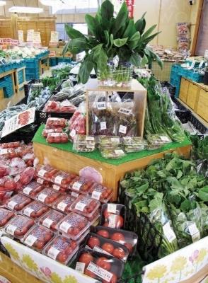 地元野菜コーナーには新鮮野菜がいっぱい。